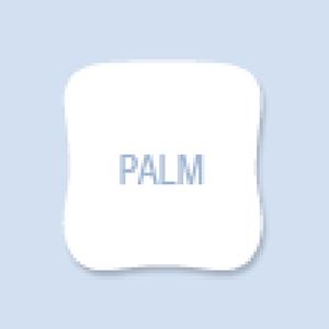 Palm Shape Hand Fan