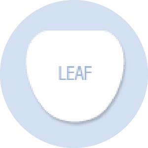 Leaf Shape Hand Fan